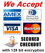 Secured checkout and payment methods